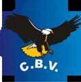 C.B.V. Vidros